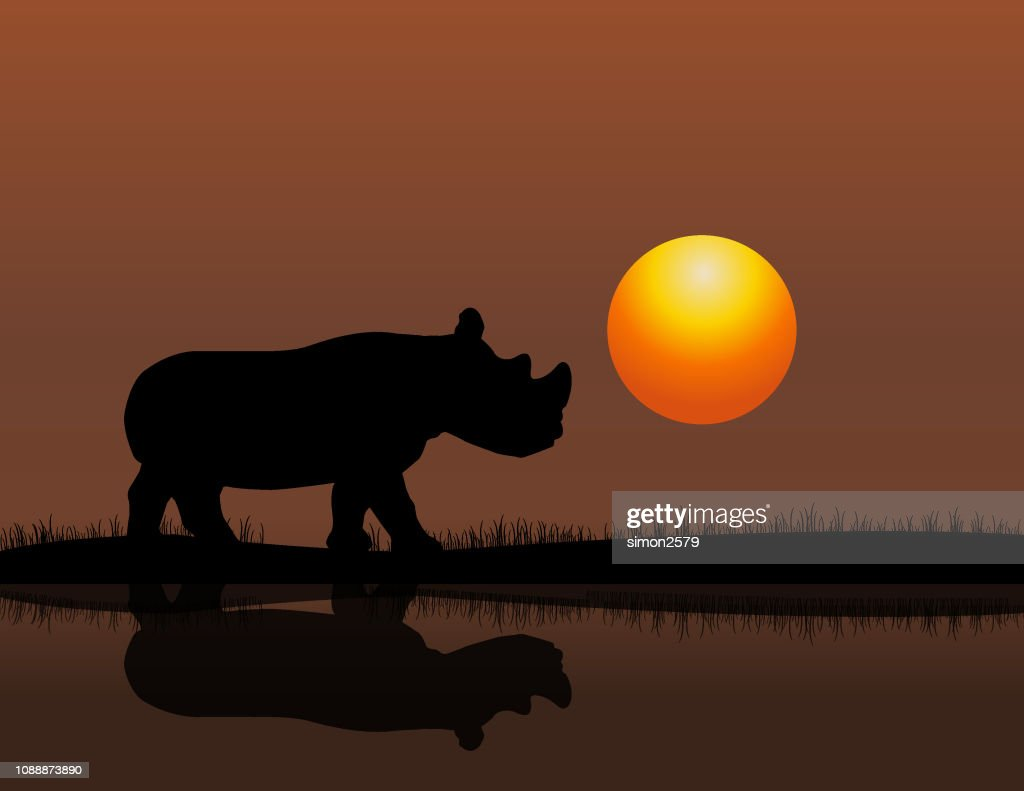 Rhino At Sunset Background stock illustration - Getty Images