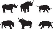 Rhino Silhouette Collection
