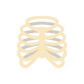 Ribs human bone medicine flat vector icon