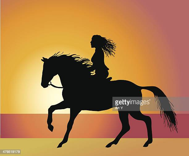 riding by the beach - stallion stock illustrations, clip art, cartoons, & icons