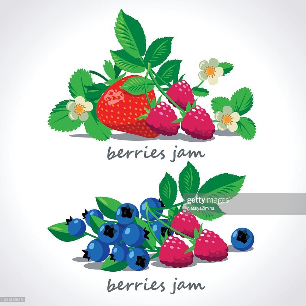 Ripe berries and flowers vector set.