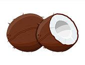 Ripe coconuts and half coconut on white.