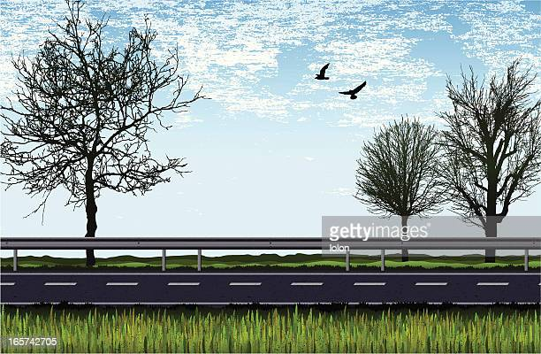 road with trees, grass and birds -daylight - highway stock illustrations