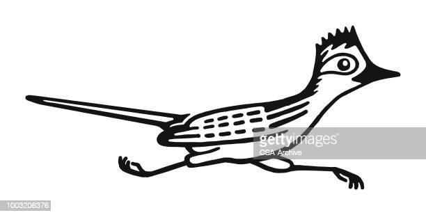 ilustraciones, imágenes clip art, dibujos animados e iconos de stock de correcaminos  - correcaminos