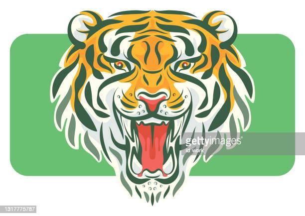 brüllendes tiger-maskottchen - manly wilder stock-grafiken, -clipart, -cartoons und -symbole