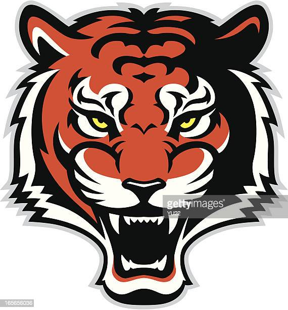 roaring tiger - snarling stock illustrations