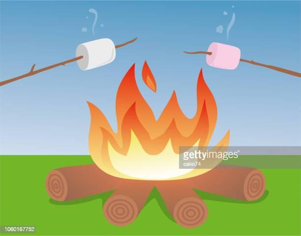 roasted marshmallow - stick plant part stock illustrations