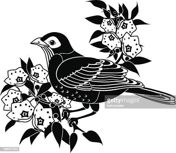 ilustrações, clipart, desenhos animados e ícones de robin e do-louro-da-montanha - mel do louro da montanha