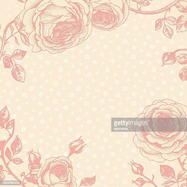romantic floral background - rosa stock illustrations