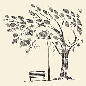 Romantic tree with bench lantern drawn sketch