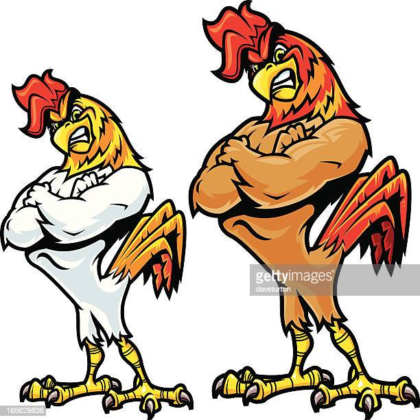 Rooster Fighting Stance