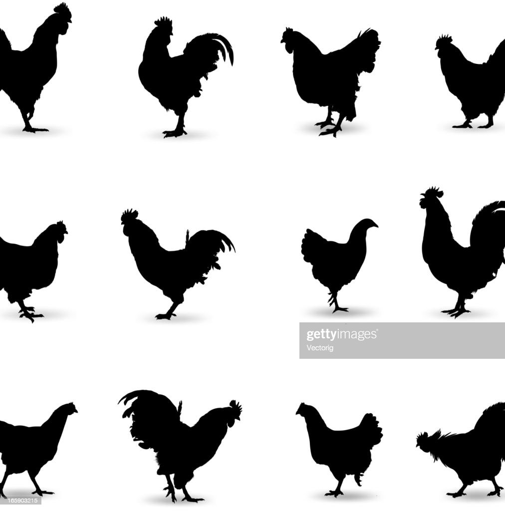 Rooster Silhouette : stock illustration