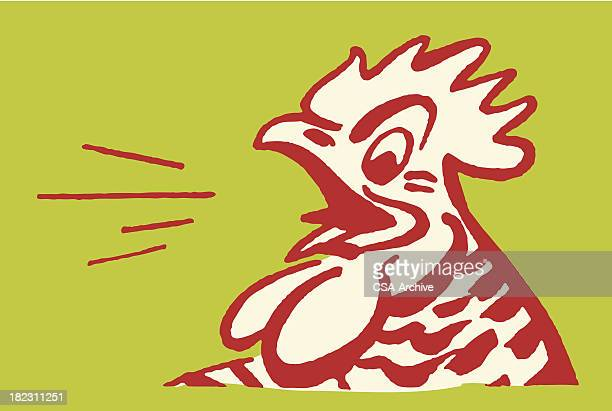 rooster - animal mouth stock illustrations