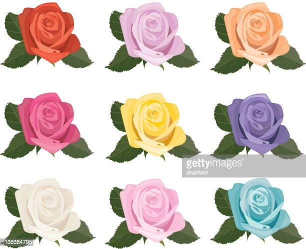 Rosa Blüten Symbole