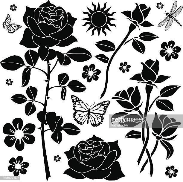 illustrations, cliparts, dessins animés et icônes de éléments de design rose garden - plante verte