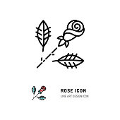 Rose icon, flower Rose logo. Line art design, Vector flat illustration