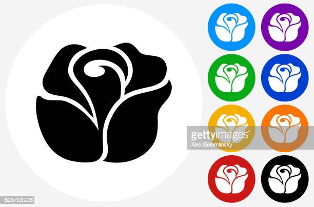 rose icon on flat color circle buttons - rose flower stock illustrations, clip art, cartoons, & icons
