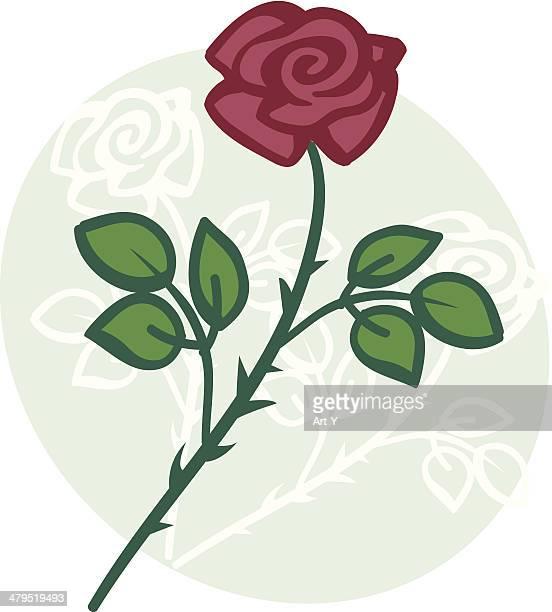 Rose an blassgrüne oval Hintergrund