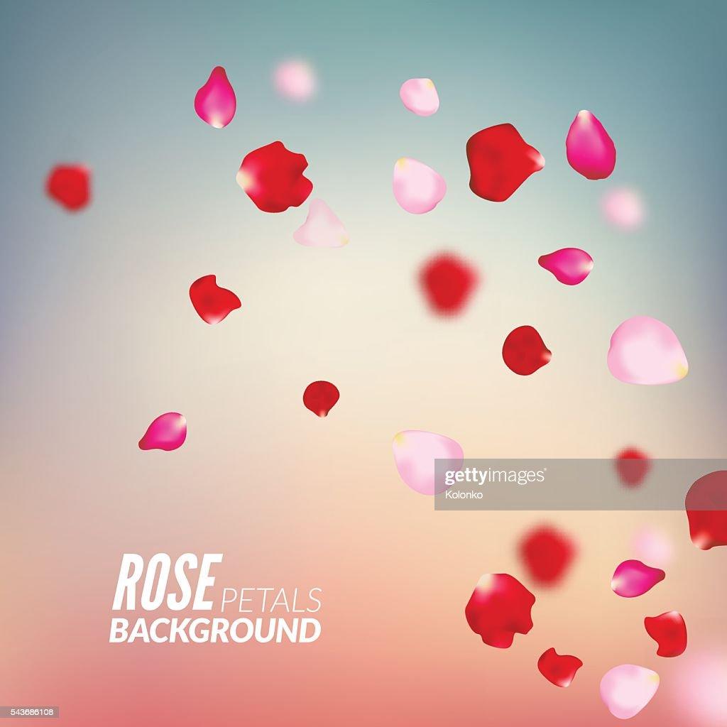 Rosenbluten Hintergrund Fur Prasentationen Einladung Adprint