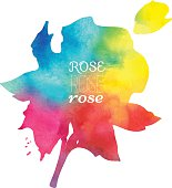 rose watercolor hand-painted
