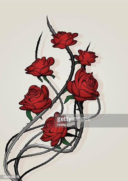 roses - sharp stock illustrations