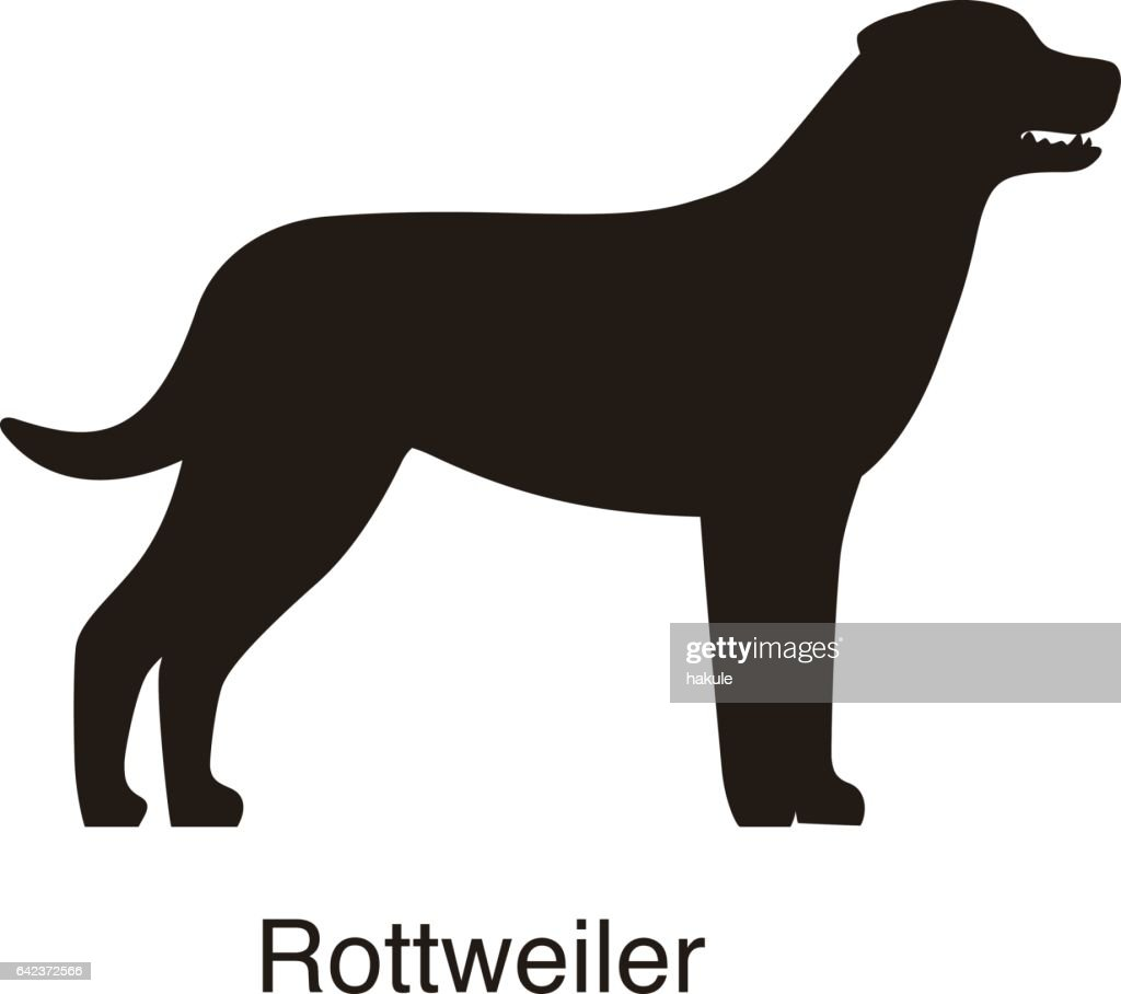 Rottweiler dog silhouette, side view, vector