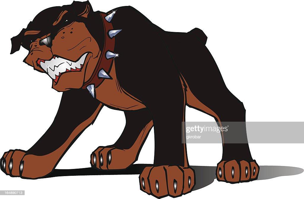 Rottweiller dog