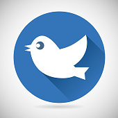 Round Blue Social Media Web or Internet Icon Bird Silhouette
