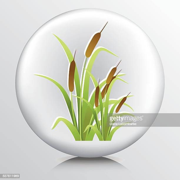 Round Environment Icon - Cattails Wetlands
