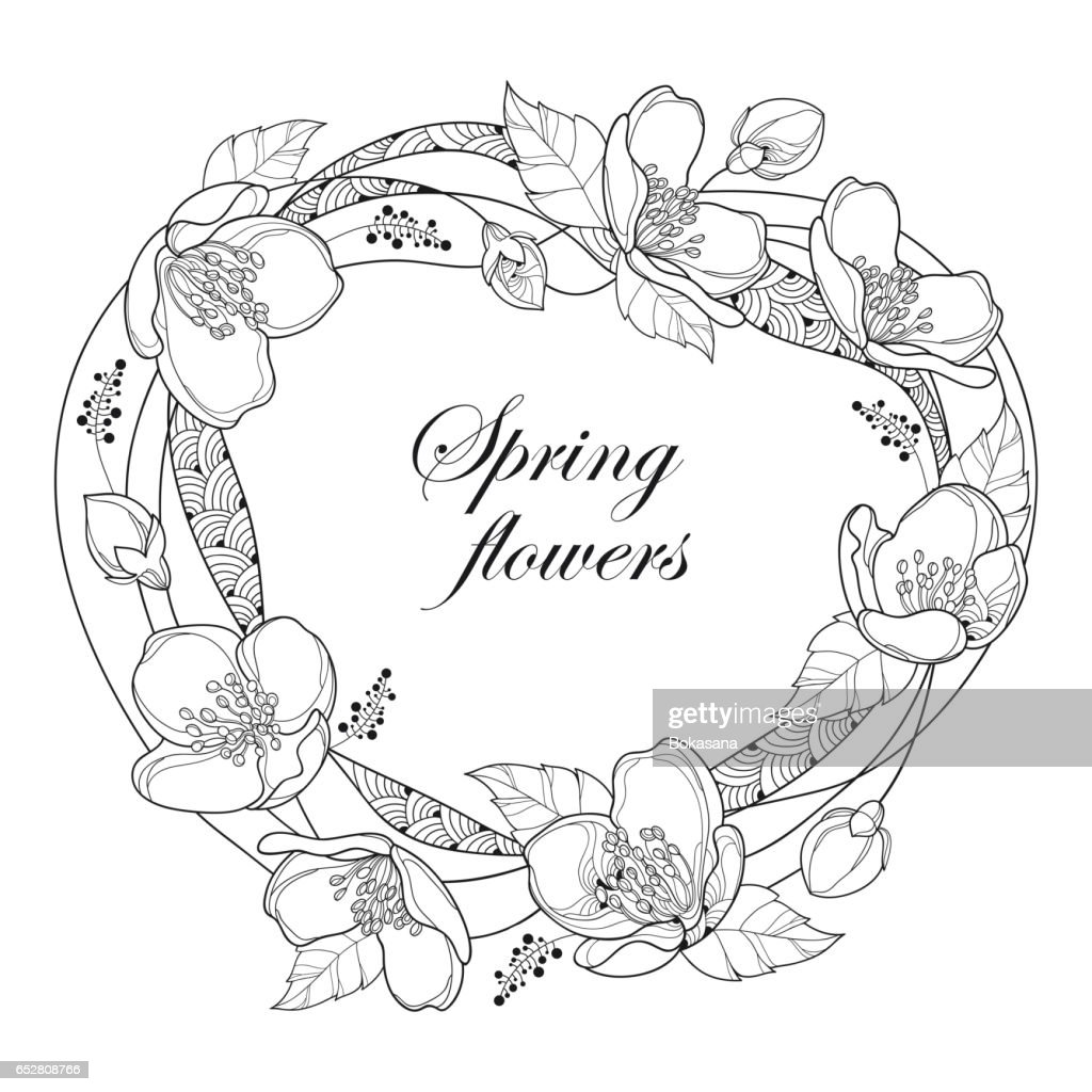 Round Frame With Jasmine Flowers Bud And Leaves Isolated On White ...