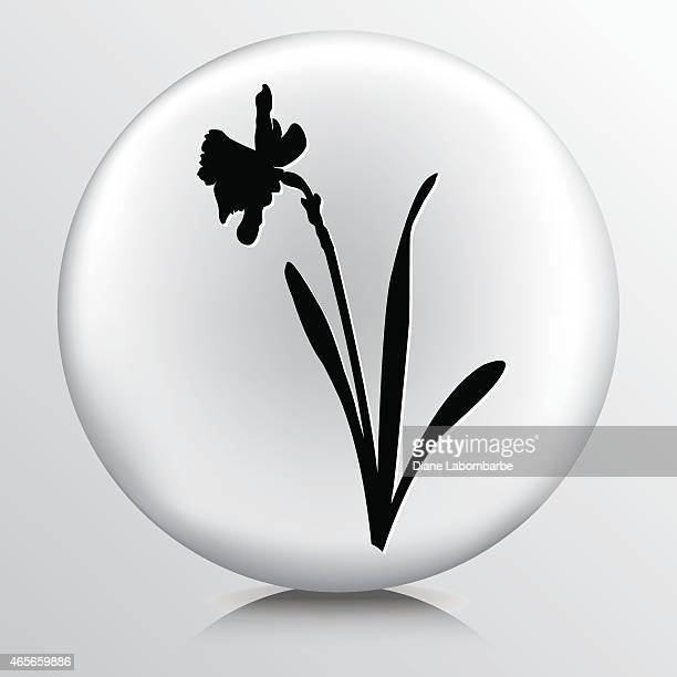 round icon with black daffodil silhouette - daffodil stock illustrations, clip art, cartoons, & icons