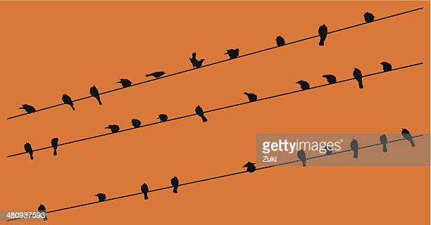 row of birds on a wire - telephone line stock illustrations, clip art, cartoons, & icons