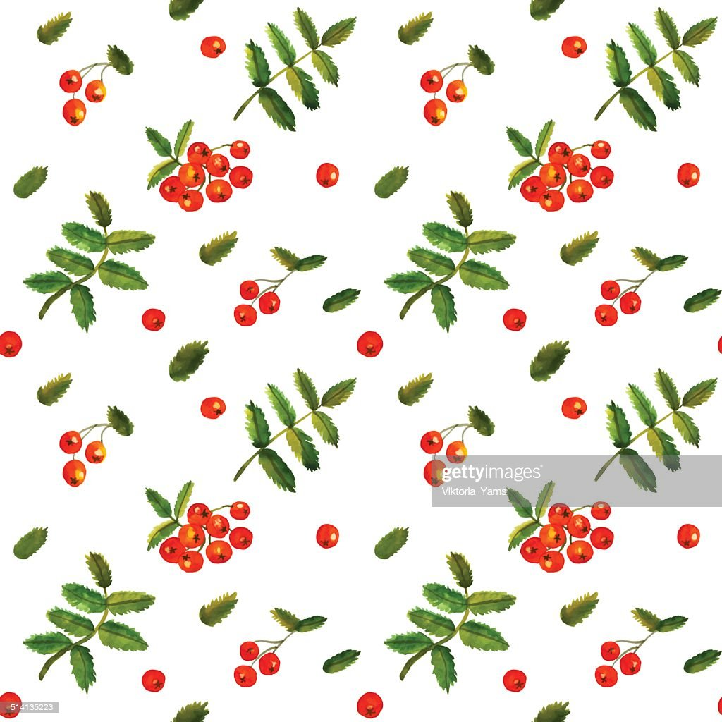 Rowan berry watercolor vintage hand drawn vector seamless pattern