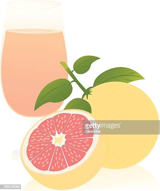 ilustraciones, imágenes clip art, dibujos animados e iconos de stock de pomelo rojo rubí - pomelo rosa