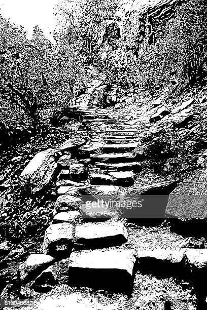 rugged hiking trail in zion national park - zion national park stock illustrations, clip art, cartoons, & icons