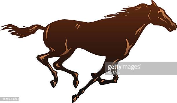 running horse one - brown stock illustrations
