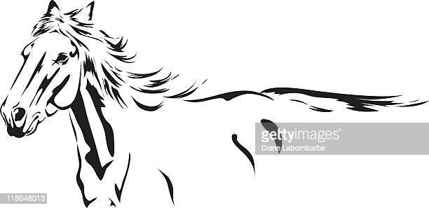 Running Stallion black Ink Sketch drawing isolated on white