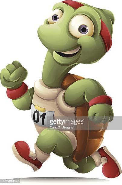 ilustraciones, imágenes clip art, dibujos animados e iconos de stock de tortuga corriendo - tortugas