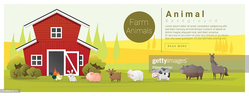 Rural landscape and farm animal background