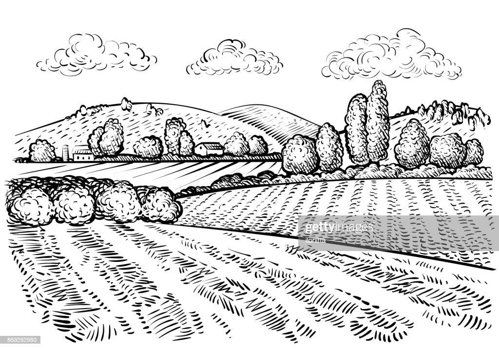 Rural landscape, handdrawn inked sketch style illustration