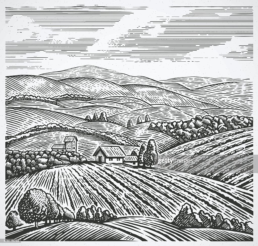 Rural landscape in graphic style.