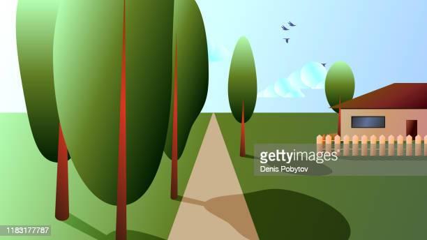 ländliche landschaft - einsame bäume entlang der straße und ein haus auf dem feld. - idylle stock-grafiken, -clipart, -cartoons und -symbole