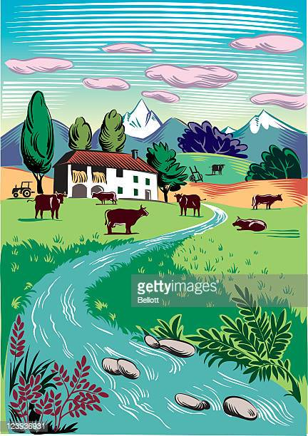 rural landscape with grazing cows - farmhouse stock illustrations
