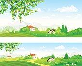 Rural panoramas