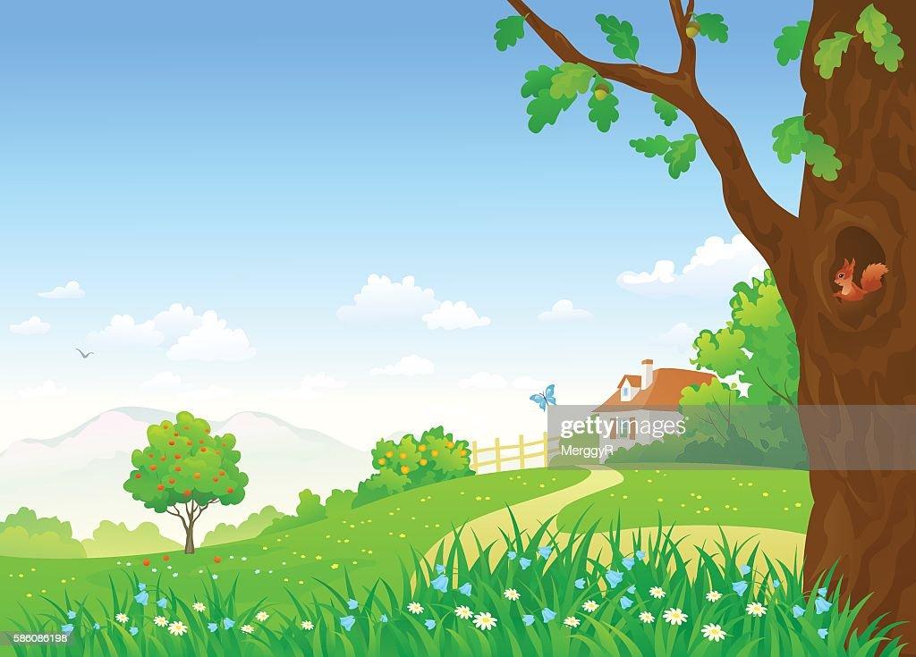 Rural summer scene