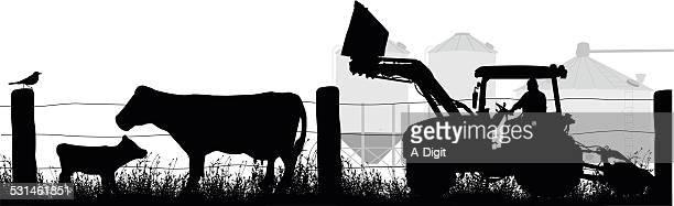 ruralattraction - calf stock illustrations, clip art, cartoons, & icons