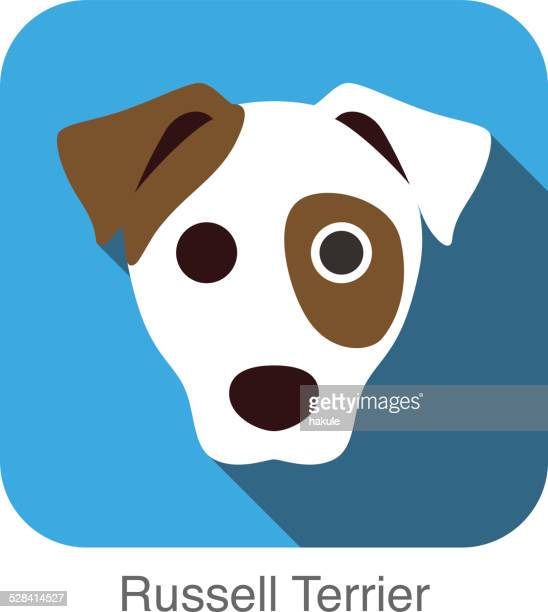 russell terrier dog face flat icon, dog series - jack russell terrier stock illustrations