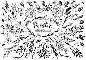 Rustic decorative plants and flowers collection.