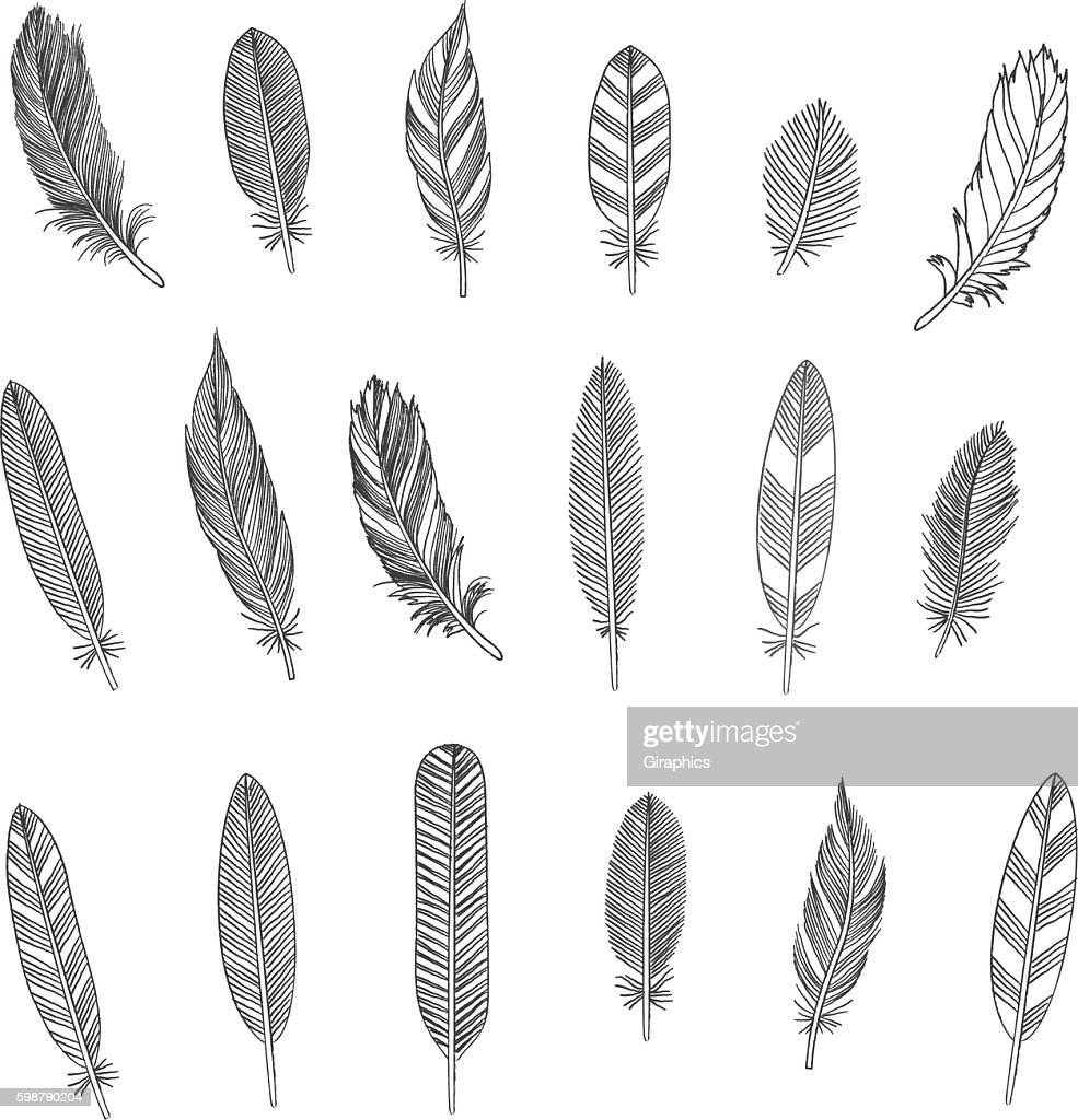 Rustic Feathers