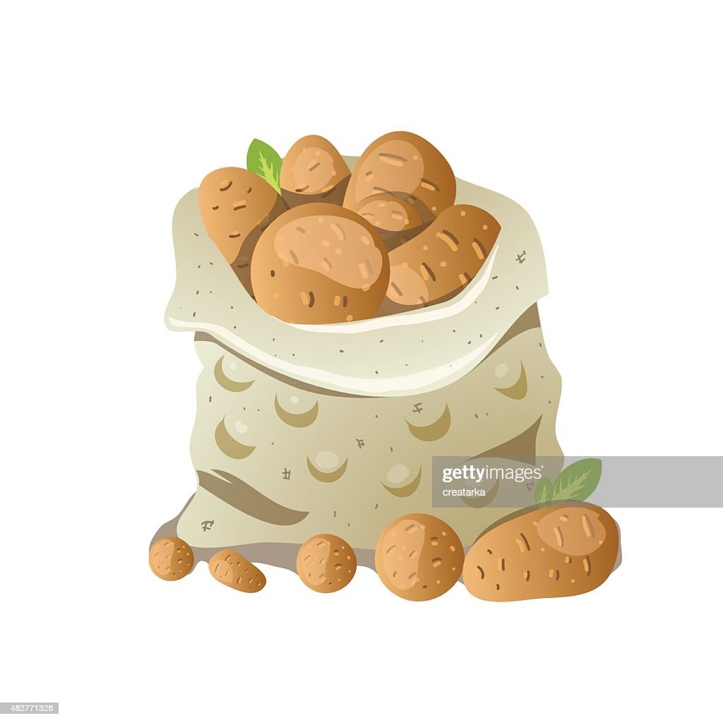 Sack of potatoes. Vector colorful illustration isolated on white